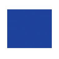Ambassadors Football – Pittsburgh Logo